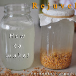 How to make rejuvelac