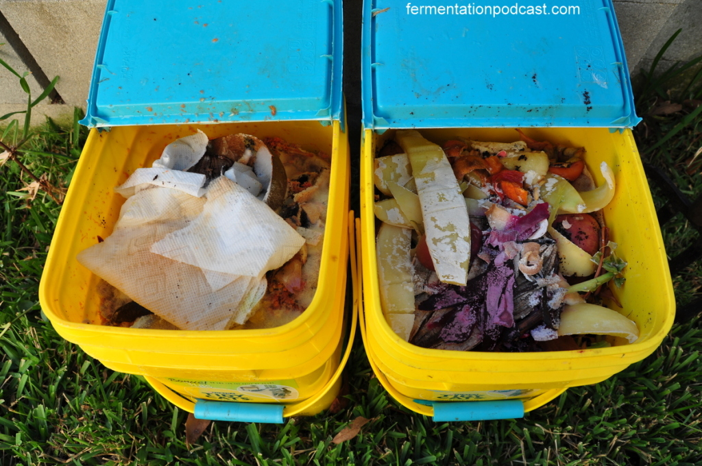 Compost pails with food scraps