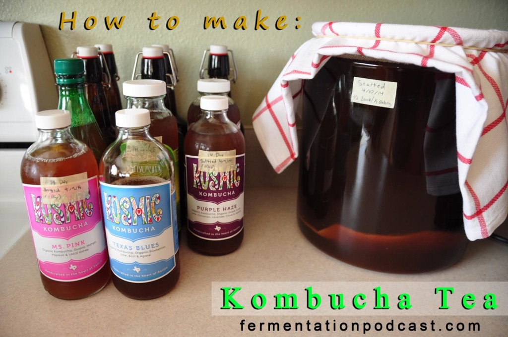 How to make kombucha tea & the SCOBY