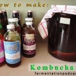 How to make kombucha tea & the SCOBY