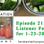 Episode 21 - Listener Feedback for 1-23-2015
