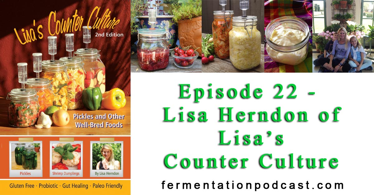 Episode 22 - Lisa Herndon of Lisa's Counter Culture